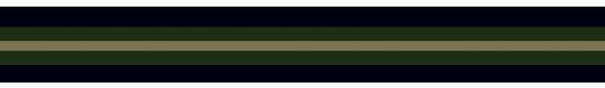 156NGK RegimentalNavyGreenKhaki - +$3.00