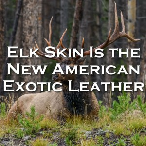 Elk Skin Is the New American Exotic Leather
